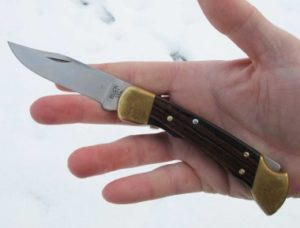 Buck-110-Folding-Hunter-hand-preview