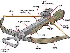 crossbow-parts-recurve