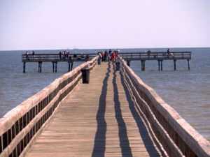 Fishing_pier_at_Pine_Gully_Park_2014